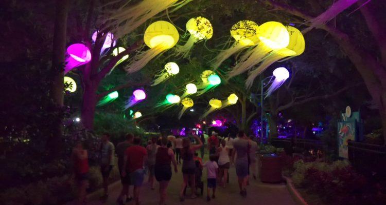 July activities in Orlando Electric Ocean SeaWorld